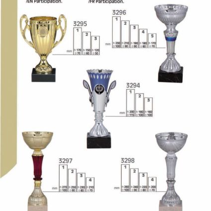 Trofeo de Participación Línea P