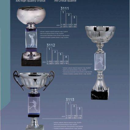 Grabado Láser 3D Trofeo