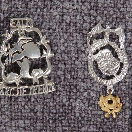 Insignia joyeria